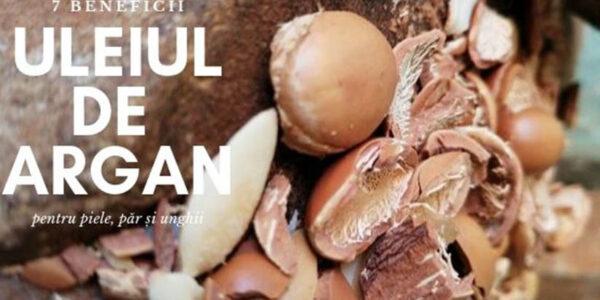 7 beneficii ale uleiului de argan pentru piele și păr