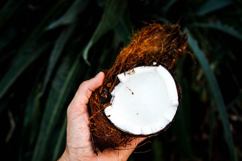 Beneficii şi întrebuinţări ale uleiului de cocos