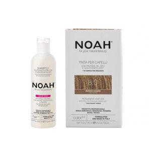 Set Color & Protect, Blond deschis, 8.0, Noah