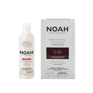 Set Color & Protect, Blond roscat inchis, 6.66, Noah