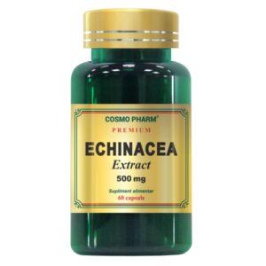 Echinacea Extract 500mg, Cosmo Pharm, 60 Capsule
